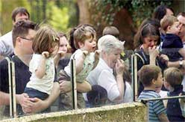 Zoo van Antwerpen wordt uitgebreid