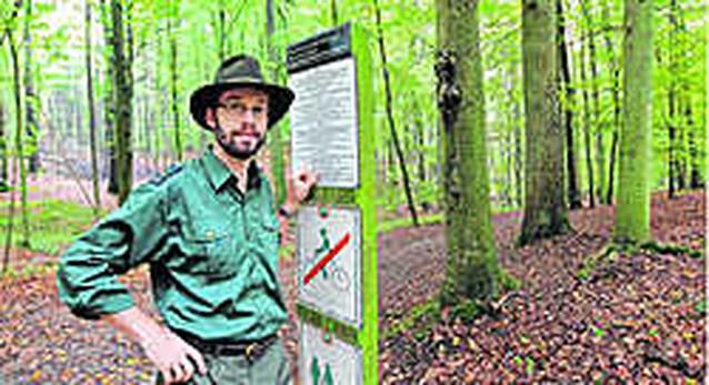 Zwaenepoel wordt Grootste bosreservaat