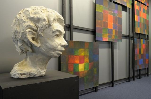 Kunst uit de Leuvense Steinerschool