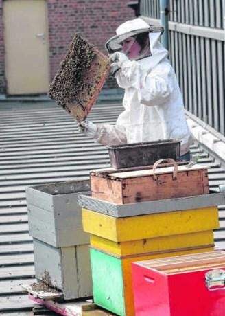 Vooruit met de bijen