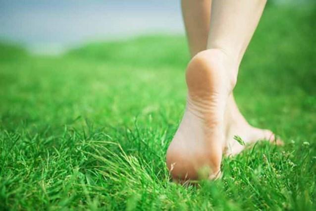 Blootsvoets in gras wandelen maakt gelukkig