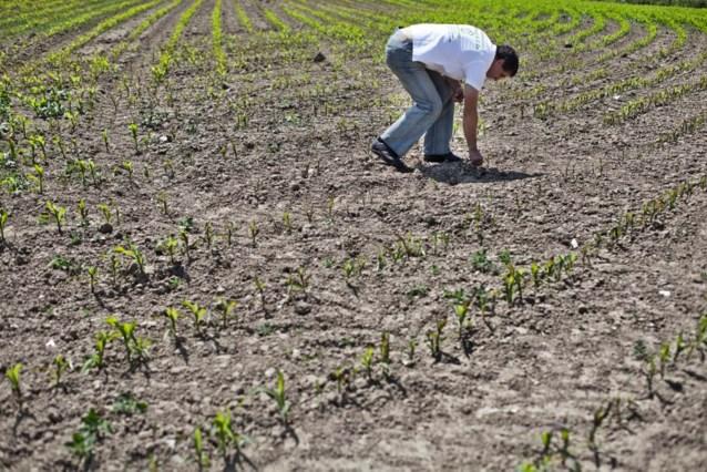 Al 100 miljoen euro schade door droogte
