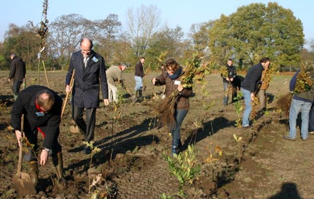 Bank plant 250 bomen in Katelijne