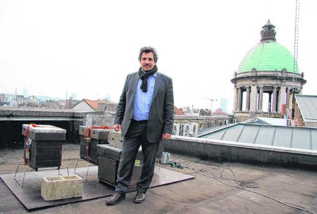 200.000 bijen op dak gemeentehuis Molenbeek