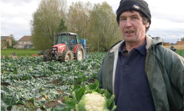 Delhaize start proefproject met landbouwers uit regio