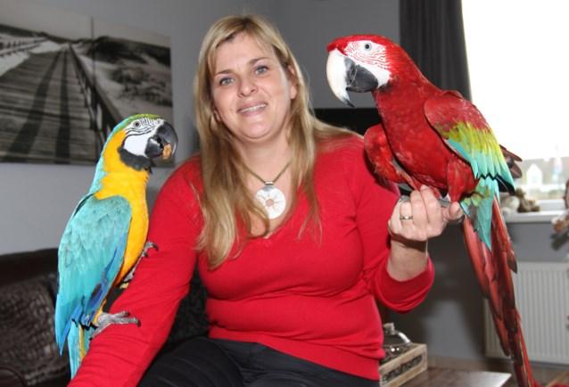 Bediende leert papegaaien hun slechte manieren af