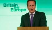 Britse premier wil referendum over EU-lidmaatschap