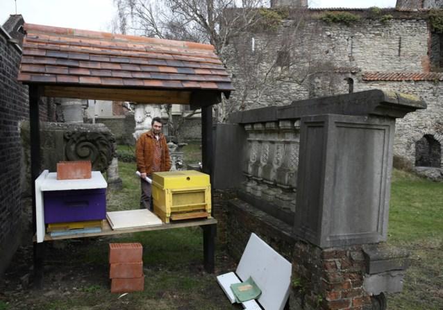 Bijen Sint-Baafsabdij overleven winter