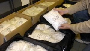 Rechtbank Hasselt buigt zich in 2014 over trafiek 15 miljoen xtc-pillen naar Australië