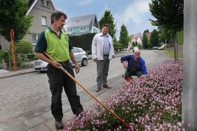 Dilbeek wil af van kale grindstroken