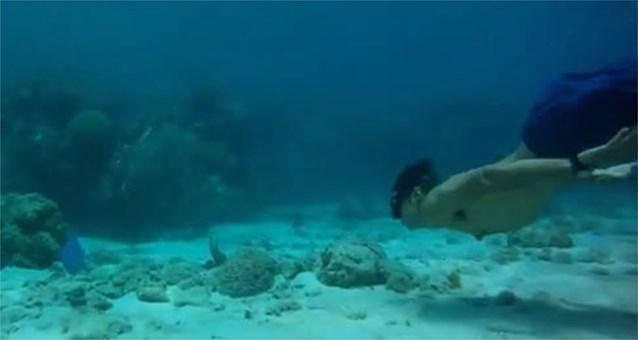 Vrijduiker sterft tijdens recordpoging op Bahama's