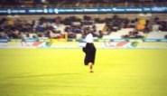 Club Brugge stuurt 'Calimero' het veld op