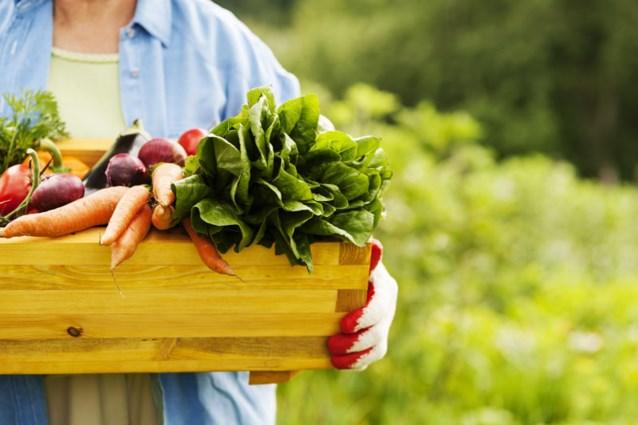 'Vijf porties groenten en fruit per dag zijn niet genoeg'