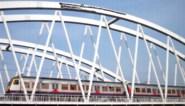 Waaghals schildert graffiti-krokodil op treinbrug over Ringvaart