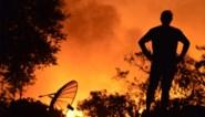Vuurzee in Californië