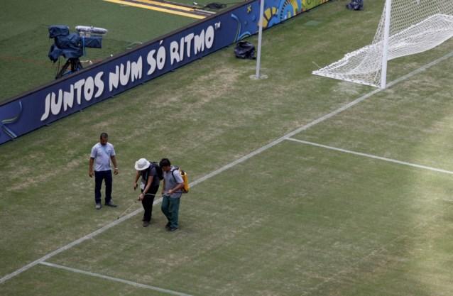 Werd de grasmat in Manaus groen geverfd?