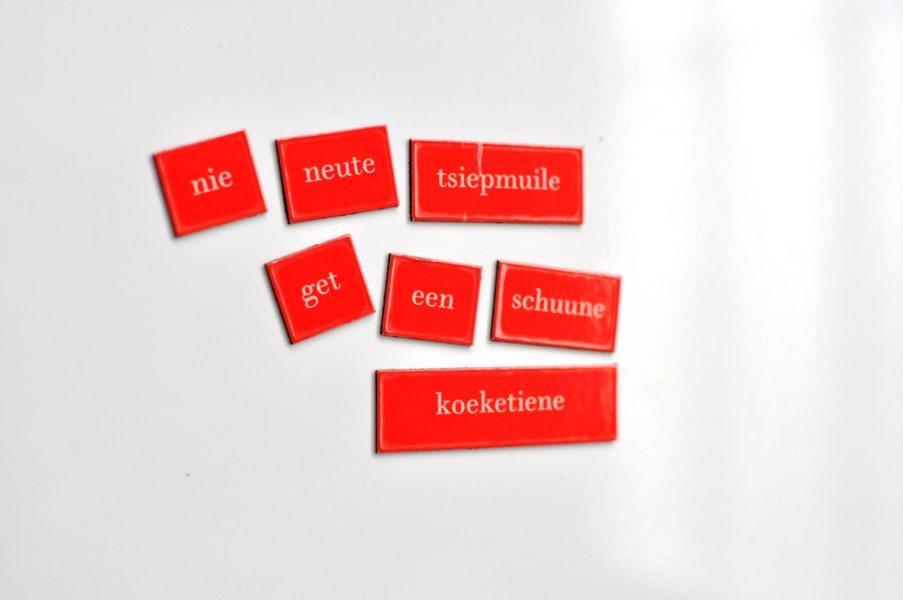 Nieuw Gentse Gedichten Op De Koelkast Met Gentsche Frigopoë