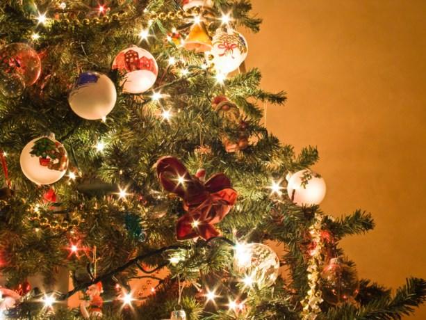 Tips om een goede kerstboom te kopen