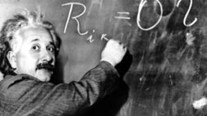 Einsteins huizenraadsel: 'Wie heeft er een goudvis?'