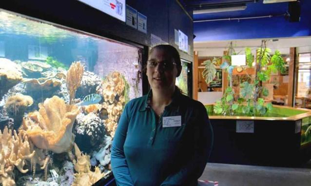 Subsidiekraan draait dicht voor Aquarium Brussel