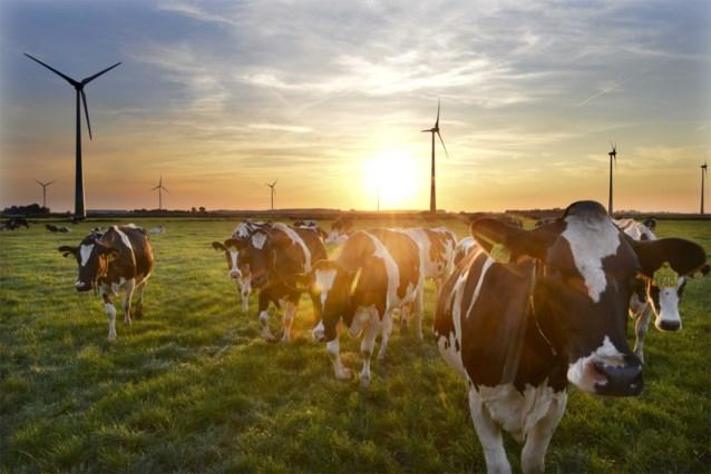 Uitstoot van bijna 12,5 miljoen ton CO2 vermeden door groene stroom