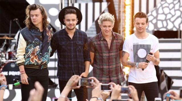 'One Direction tijdelijk uit elkaar'