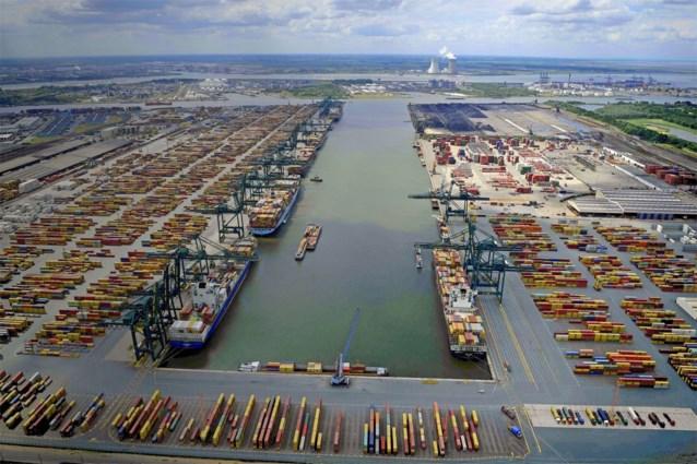 Bijna 500 kilo cocaïne onderschept in Antwerpse haven