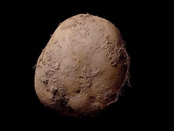 Fotograaf verkoopt foto van aardappel voor 1 miljoen euro