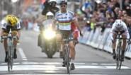 Sagan kan toch winnen! Wereldkampioen eindelijk beloond voor geweldige race in Gent-Wevelgem