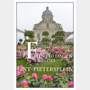 Floraliën in beeld (2):  Sint-Pietersplein