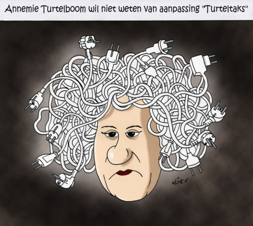 Wat is de Turteltaks?