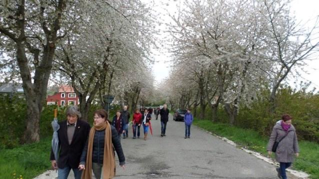 Resem toeristische wandelingen deze maand