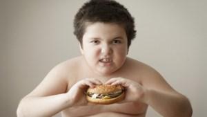 Belg eet minder (vaak) vlees