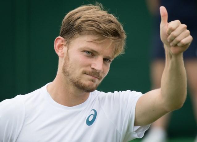 David Goffin zakt naar 13e plaats op ATP-ranking