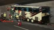 """Nederland eist duidelijkheid over oorzaak busramp Sierre via bloedstalen, """"maar die zijn vernietigd"""""""