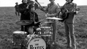 Haren van The Beatles geveild voor bijna 10.000 euro