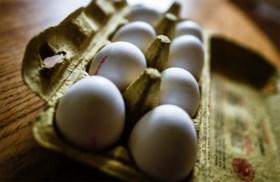 Colruyt, Aldi, Delhaize en Albert Heijn nemen eieren uit de rekken uit voorzorg voor fipronil-besmetting