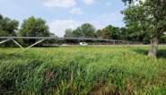 Eerste Parkbosbrug succesvol geïnstalleerd over E40