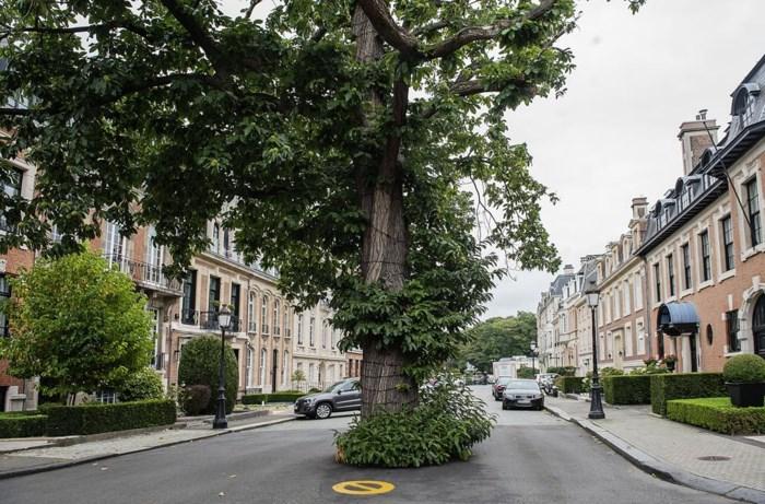 Het duurste en meest exclusieve stukje van België met huizen tot 14 miljoen