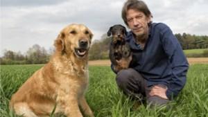Volgens Chris Dusauchoit hebt u nog veel te leren over uw hond. Wist u deze vijf dingen al?