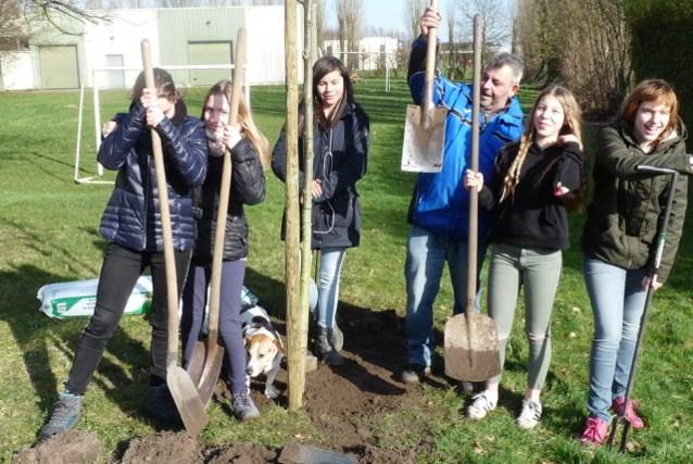 Leerlingen Broeders planten bomen op hun schooldomein