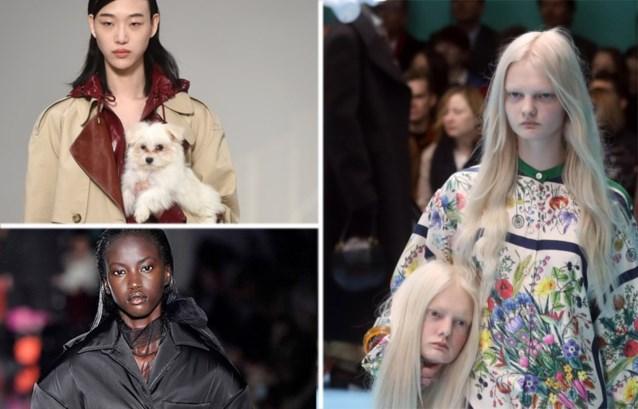 Van drones tot honden in de hoofdrol: dit waren de hoogtepunten van de modeweek in Milaan