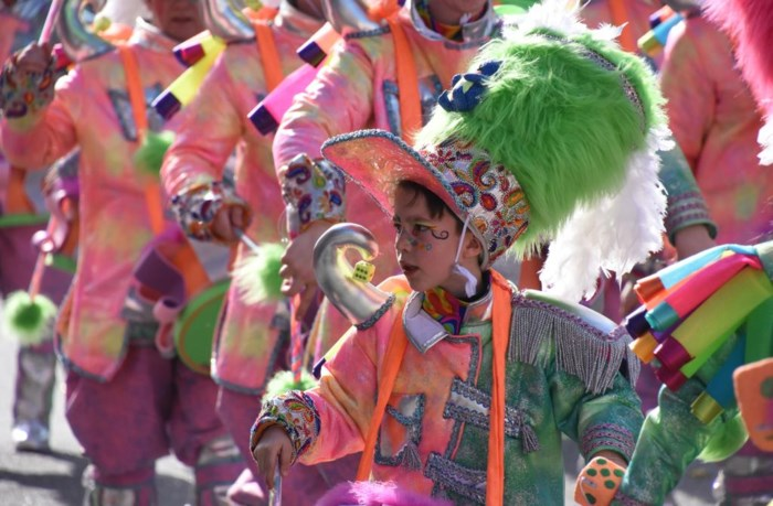 CARNAVAL. Carnaval Halle: wat mag en wat mag absoluut niet?
