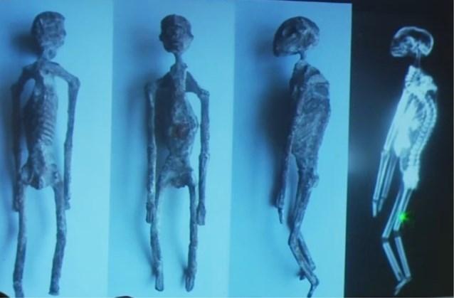 """Omstreden wetenschapper in de ban van mummies met drie vingers: """"Deze wezens zijn niet menselijk"""""""