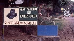 Ze werden ontvoerd omdat ze gorilla's wilden beschermen. Nu zijn 27 mensen weer vrijgelaten door Congolese guerrilla's