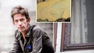 """Furieuze Chris Dusauchoit haalt uit naar buur: """"Stank is niet te harden en wekenlang vliegenstront van plafond geschrobd"""""""