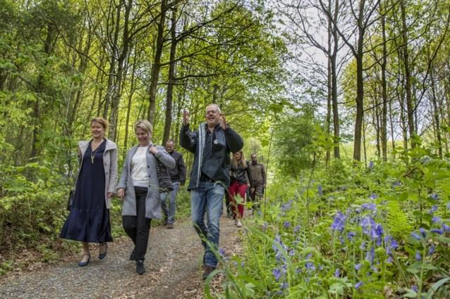 U krijgt 510 euro subsidie van Vlaanderen om door het bos te wandelen tegen de stress