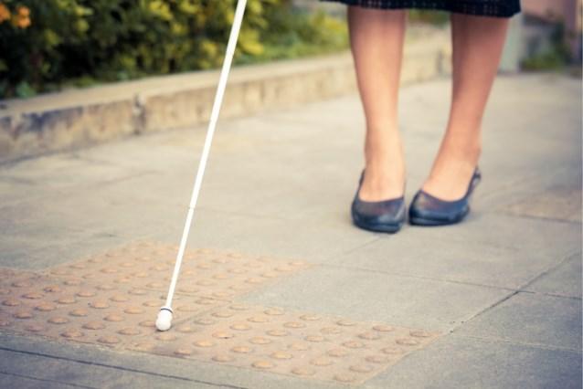 Amanda kreeg tijdens een wandeling een stofje in haar oog, nu is ze zo goed als blind