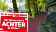 'Hier blijven auto's achter de fietsers': grote borden om inhaalverbod duidelijk te maken