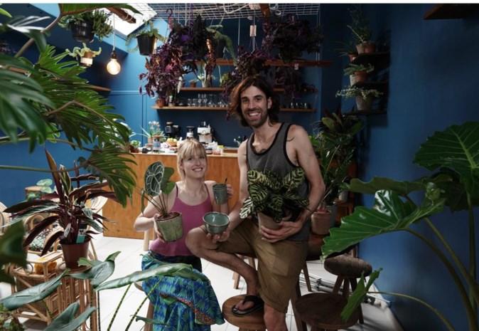 Welkom in de jungle